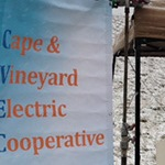 oo-cape-vineyard_winner_sm.jpg