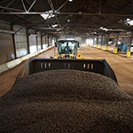 Zilkha Biomass Selma LLC 1